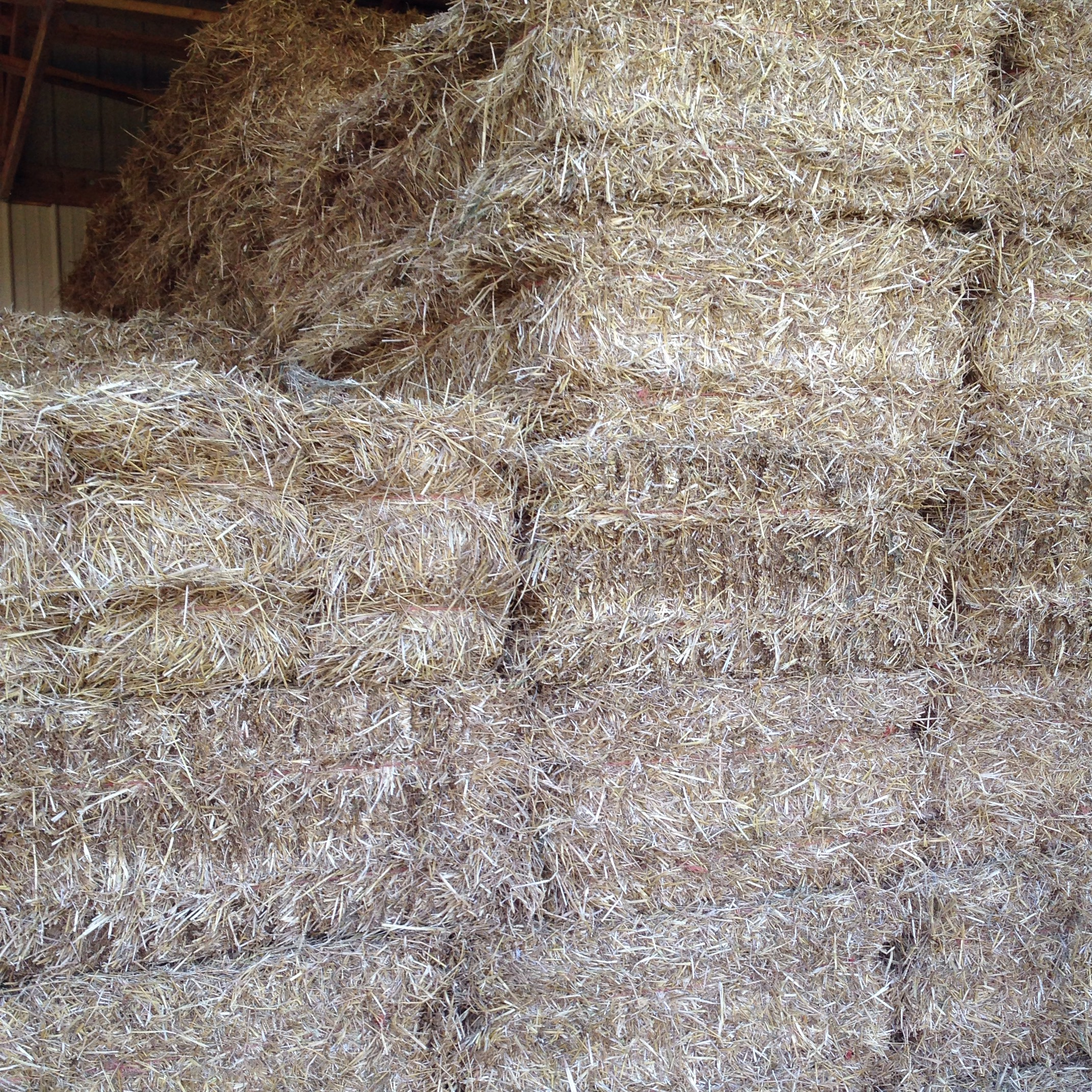 6ed90889b57 Hay For sale in butler