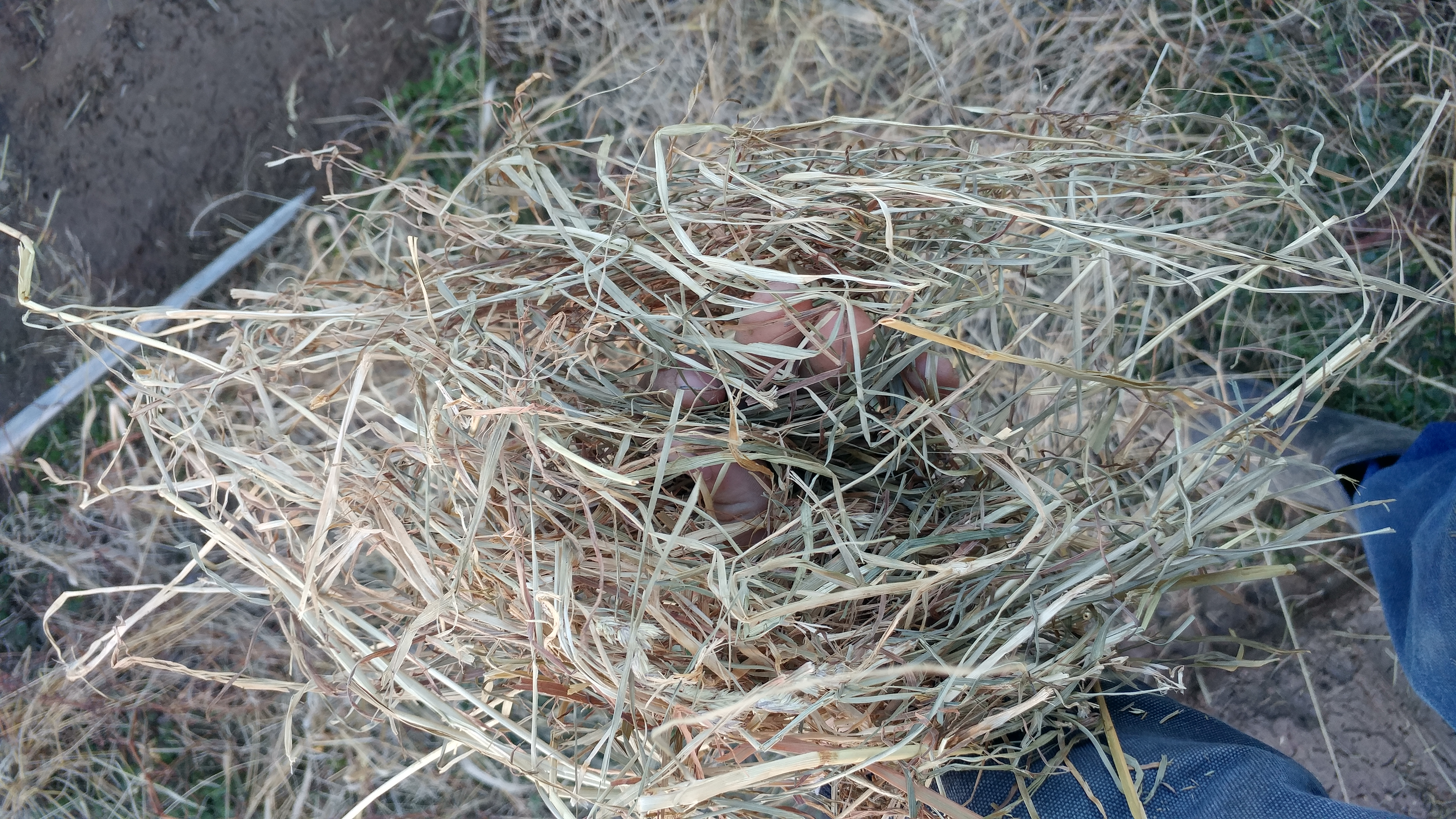 Hay For Sell | Hay Map