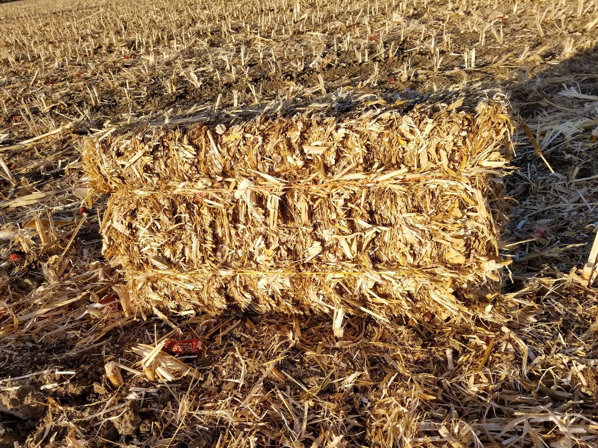 Corn stalk bales